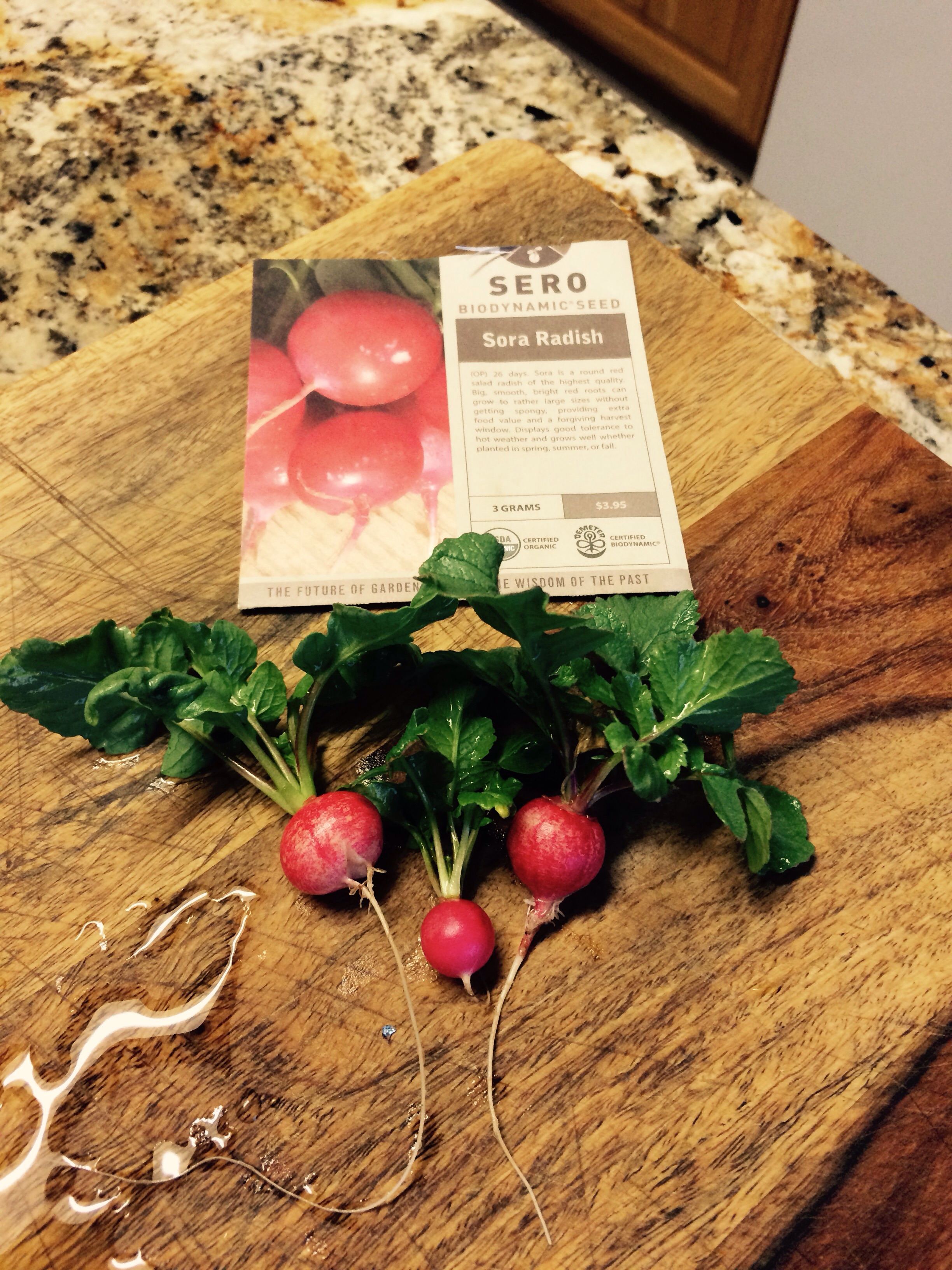 These radishes are so tasty tender