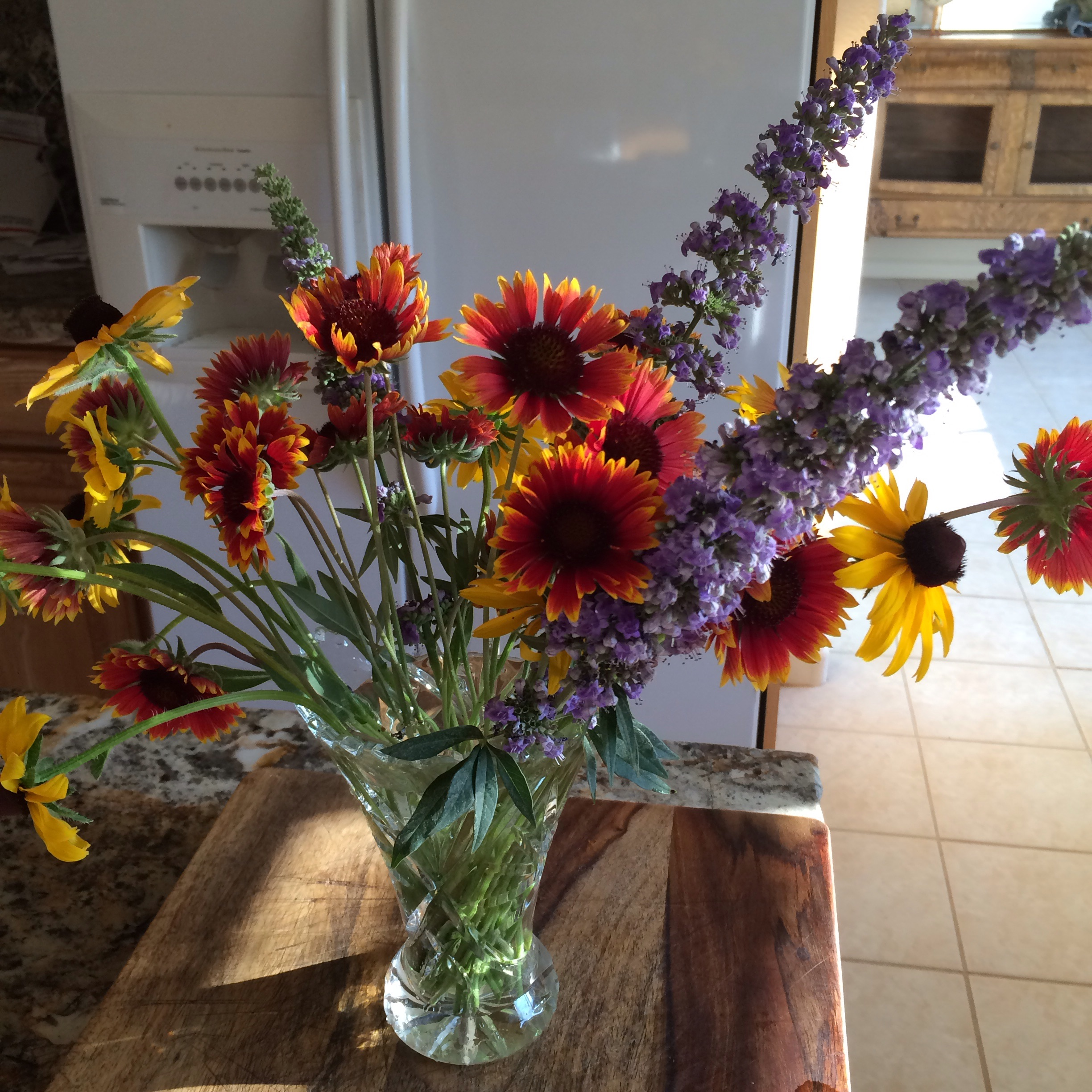 Just picked in the pasture trying to keep the beauty even when it's 111 degrees here on the farm