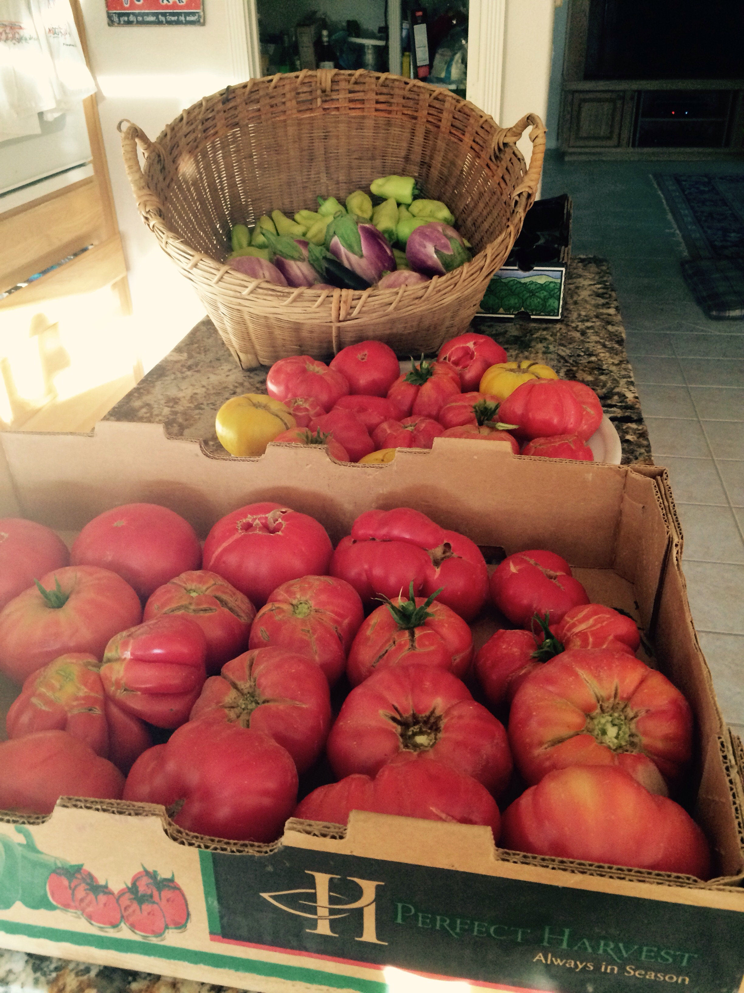 Loads of heirlooms ,tomatoes, eggplant, and peppers