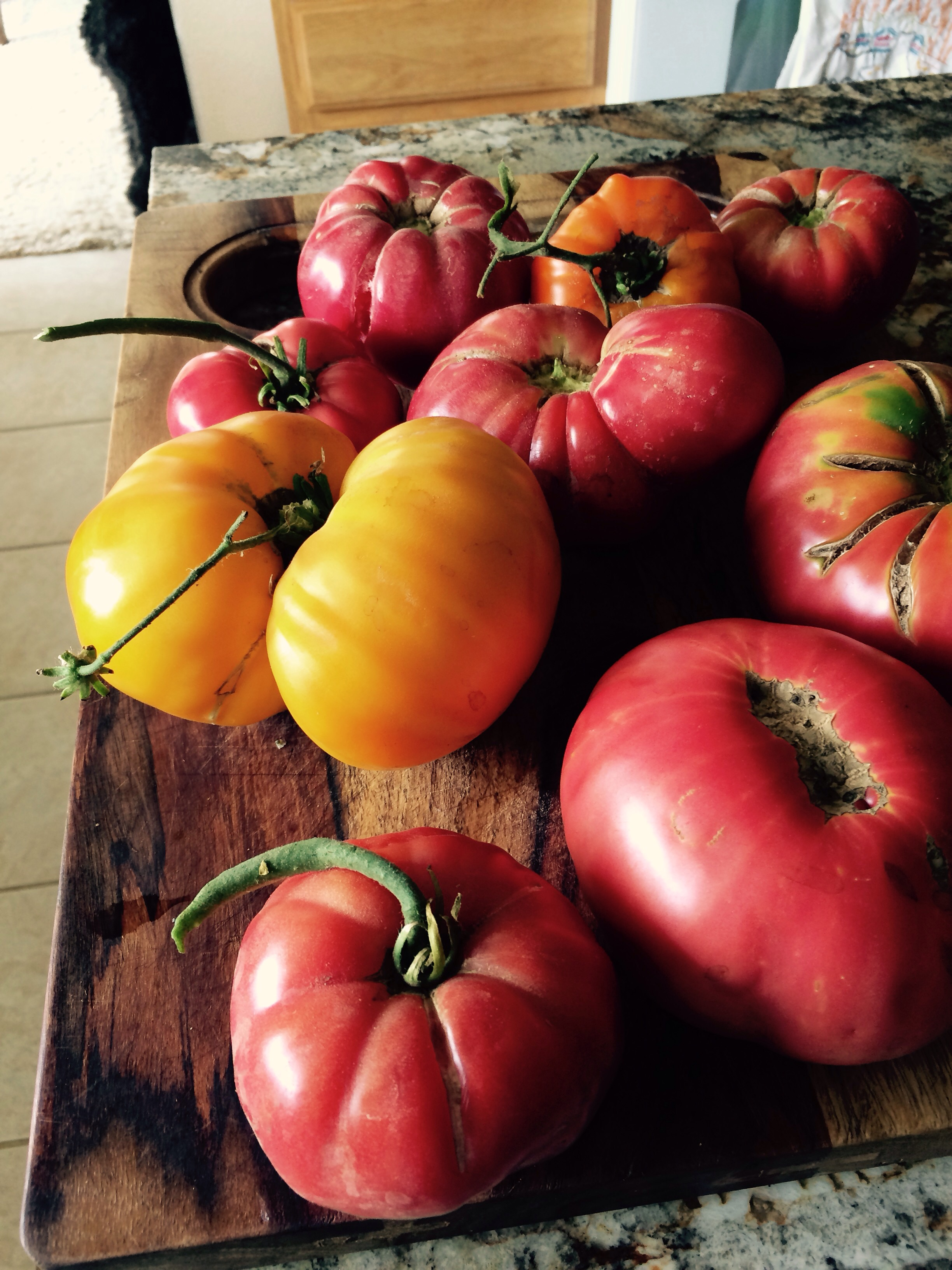 My good friend Nancy White is coming to the farm and we are going to make hierloom tomato sauce and can them looking forward to some hard work to preserve all these wonderful tomatoes